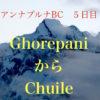 【アンナプルナBC5日目】Ghorepaniから3ヶ所通過してChuileを目指す